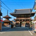 荒子観音 - 4:山門と観音寺多宝塔