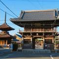 荒子観音 - 5:山門と観音寺多宝塔