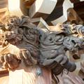 荒子観音 - 11:山門の狛犬
