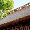 荒子観音 - 56:寺院に隣接する神明社