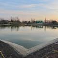 Photos: 夕暮れ時の落合池