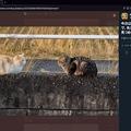 Photos: Twitter公式WEB:画像拡大表示時に右側にツイート