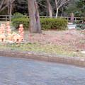 Photos: 二子山公園 - 17:埴輪