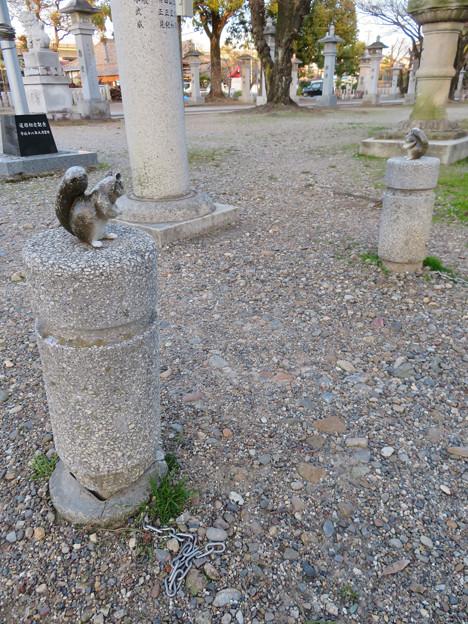 二子山公園:白山神社側の出入り口にあるリスの像 - 3
