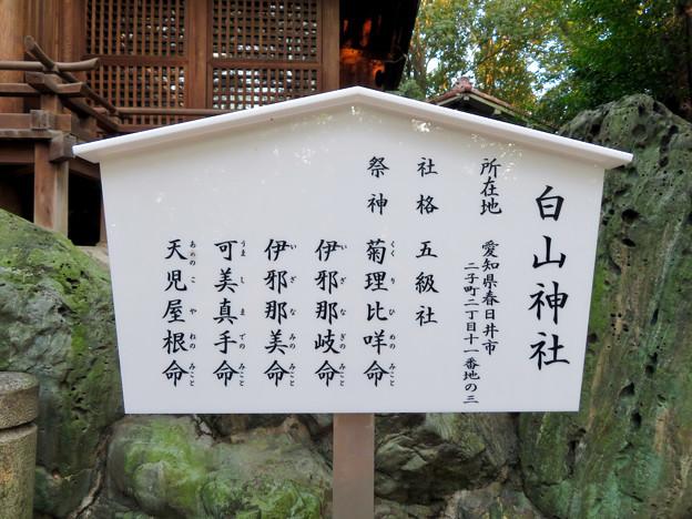 白山神社 - 46