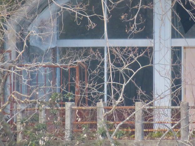 冬で葉っぱが少なかったためよく見えた城山荘のテラス - 8