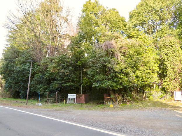 旧・京都大学霊長類研究所(2007年4月1日~2008年3月31日) - 1