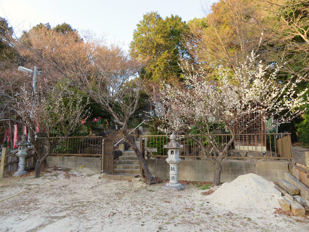 Photos: 慈眼寺 - 24:木曽御嶽山 平針心願講合祀霊神場