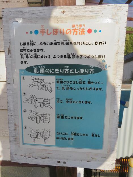 名古屋市農業センター No - 39:乳搾り体験機の説明