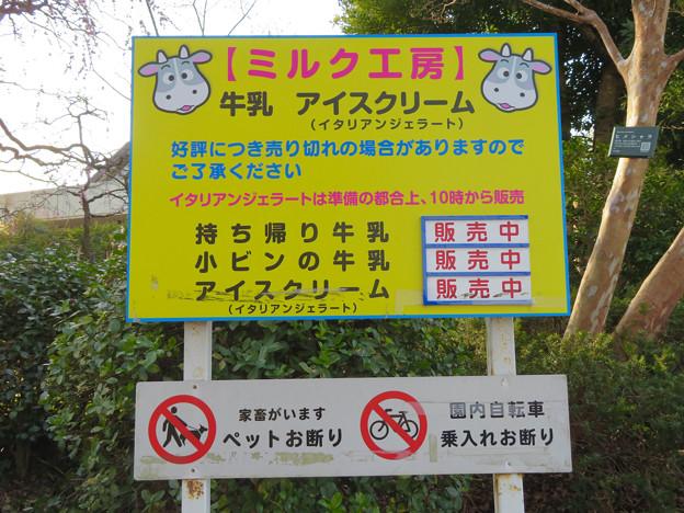 名古屋市農業センター No - 53:牛乳やアイスの販売情報