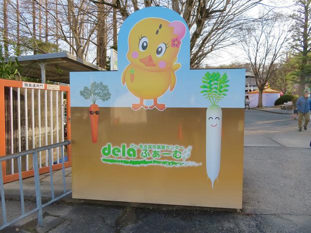 名古屋市農業センター No - 54:しだれ梅まつり時のゲート