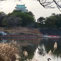 名古屋城:整備中の堀と天守閣 - 1