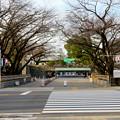 名古屋城正門 - 3