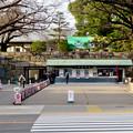 名古屋城正門 - 4