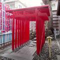 Photos: 浅間神社(名古屋市西区那古野) - 20:稲荷神社