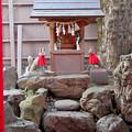 Photos: 浅間神社(名古屋市西区那古野) - 21:稲荷神社