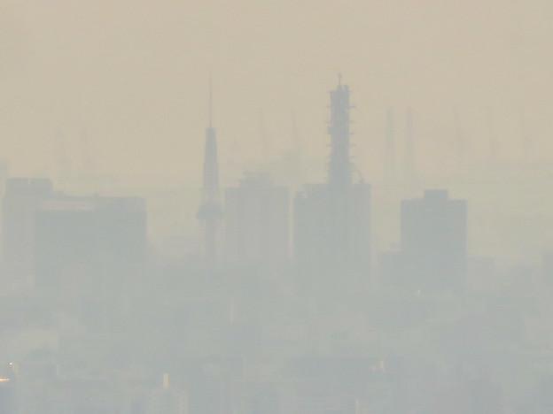 尾張白山社から見た名古屋テレビ塔とNTTドコモ名古屋ビル