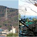 Photos: リニア中央線のための送電線鉄塔工事現場 - 4