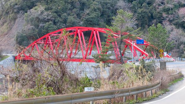 諏訪大橋 - 5