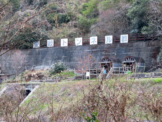 県道15号名古屋多治見線沿いから見た愛岐トンネル群 - 3