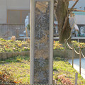 Photos: 密蔵院の永代供養墓 - 2