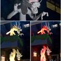 万松寺のカラフルに色づく白龍 - 2