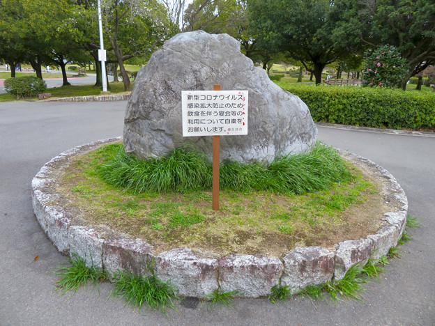落合公園:コロナウイルス感染拡大防止で花見自粛のお願い - 1
