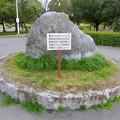 Photos: 落合公園:コロナウイルス感染拡大防止で花見自粛のお願い - 1