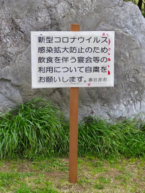 落合公園:コロナウイルス感染拡大防止で花見自粛のお願い - 2