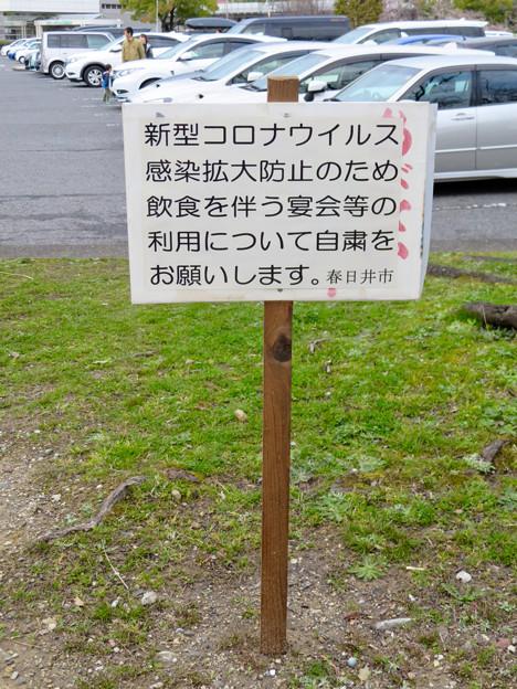 落合公園:コロナウイルス感染拡大防止で花見自粛のお願い - 4
