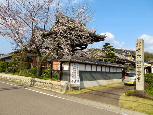 覚専寺 - 3