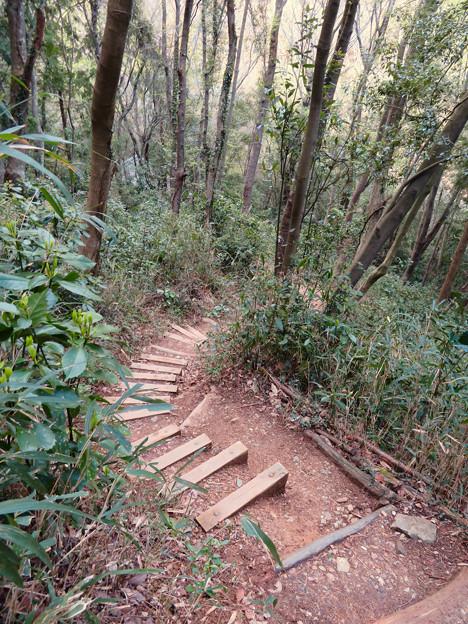猿啄城展望台の登山道 - 2