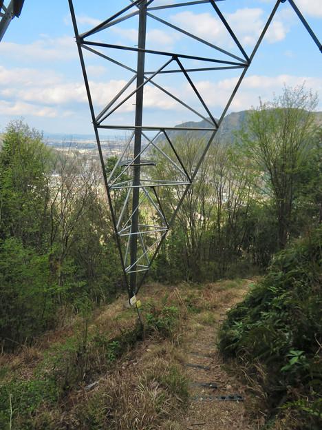 猿啄城展望台の登山道 - 3