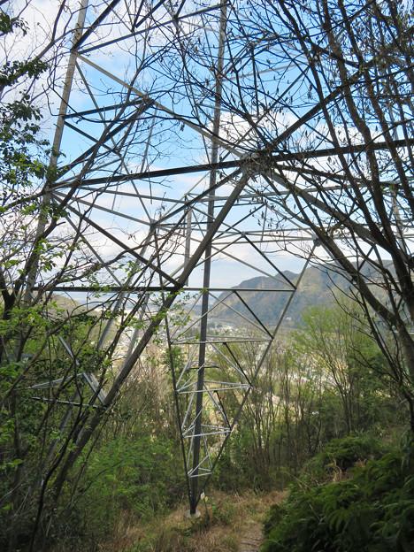 猿啄城展望台の登山道 - 4