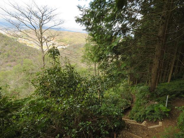猿啄城展望台の登山道 - 5