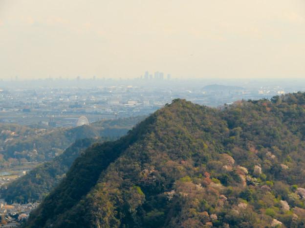 猿啄城展望台から見た景色 - 15:名駅ビル群