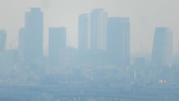 猿啄城展望台から見た景色 - 17:名駅ビル群