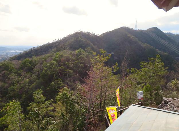 猿啄城展望台から見た景色 - 20