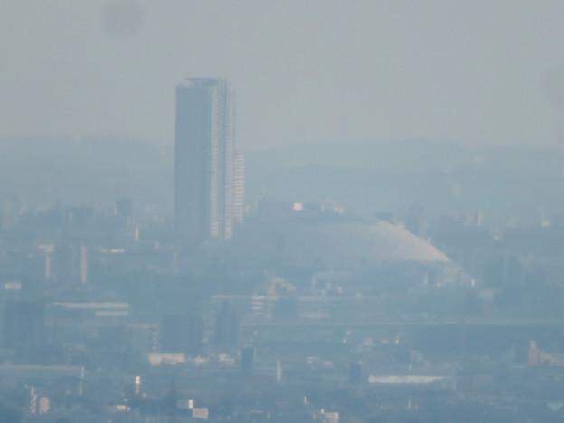 猿啄城展望台から見た景色 - 23:ナゴヤドーム