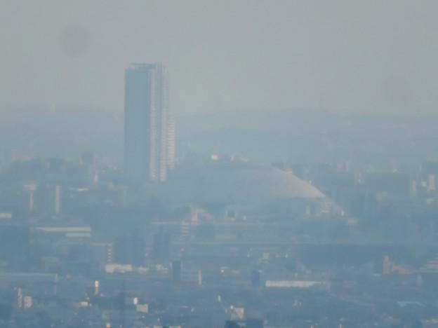 猿啄城展望台から見た景色 - 24:ナゴヤドーム
