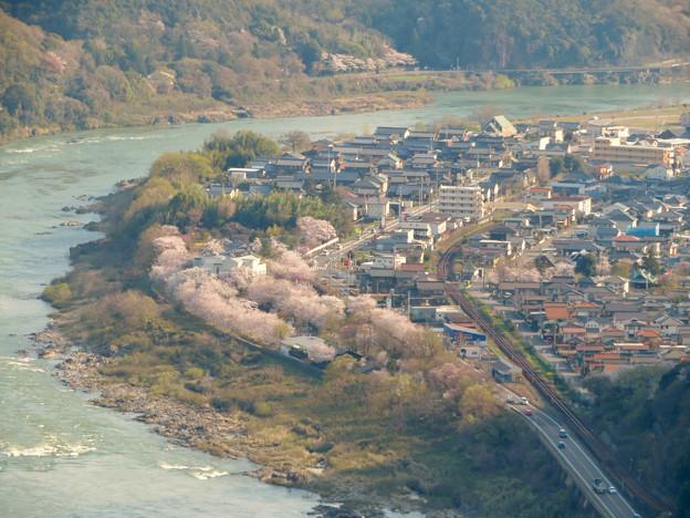 猿啄城展望台から見た景色 - 43:木曽川沿いの桜