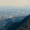猿啄城展望台から見た景色 - 45:モンキーパークの観覧車と名駅ビル群