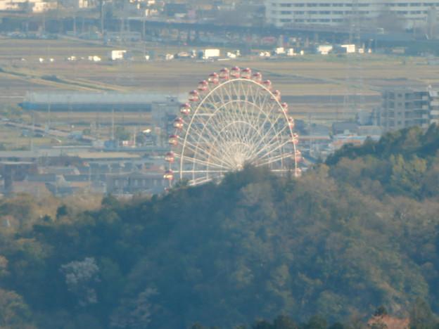 猿啄城展望台から見た景色 - 46:モンキーパークの観覧車