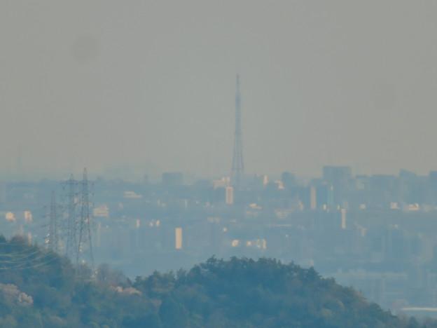 猿啄城展望台から見た景色 - 50