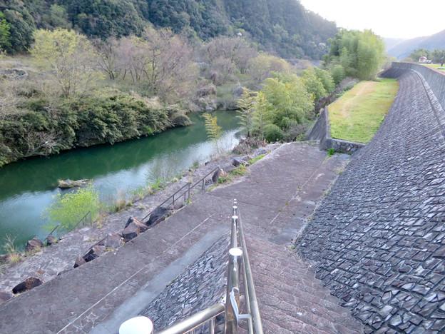 坂祝町:堤防の上から見た木曽川 - 1