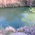 坂祝町:堤防の上から見た木曽川 - 2