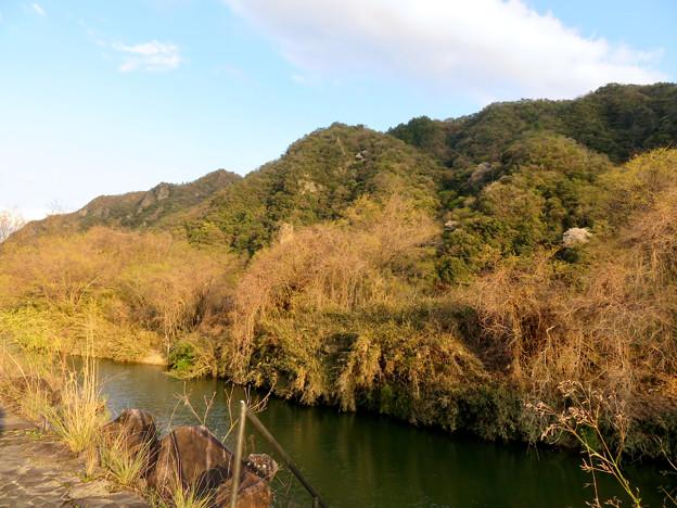 坂祝町:木曽川沿いから見た犬山市北部の山々 - 2