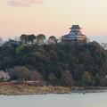 Photos: 木曽川沿いの桜と犬山城 - 4