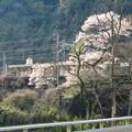 橋の上から見た古虎渓駅 - 7
