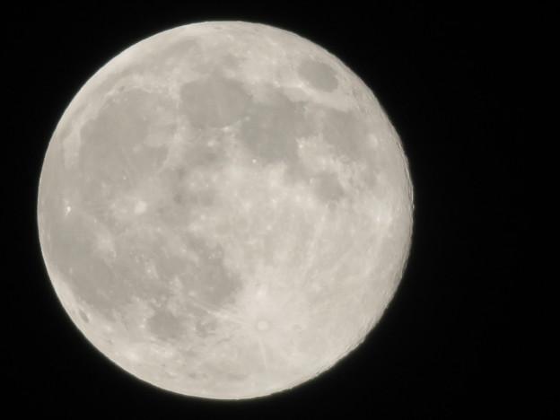 Photos: 満月(2020年4月9日) - 3